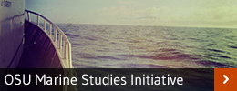 marine studies initiative